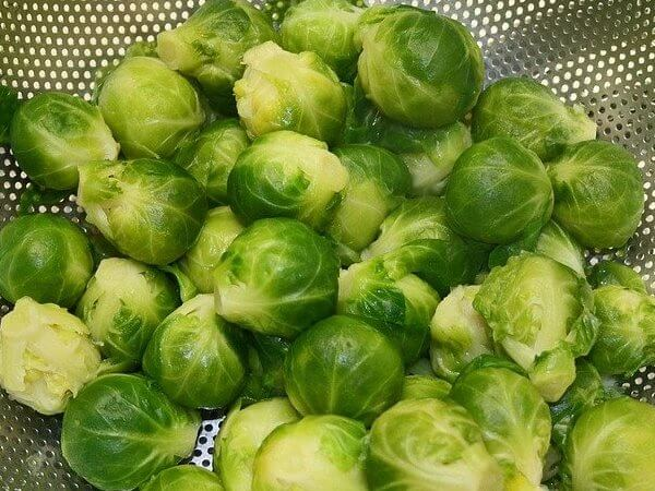 Can dogs eat Brussel sprouts cooked