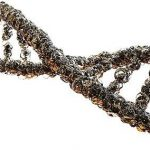 cdrm mutated genes