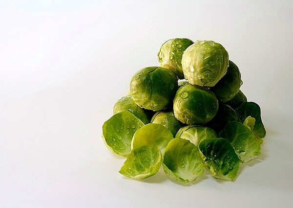 dogs brussel sprouts