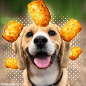 can dogs eat tater tots