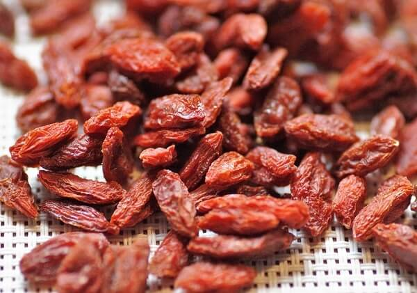 can dogs have goji berries