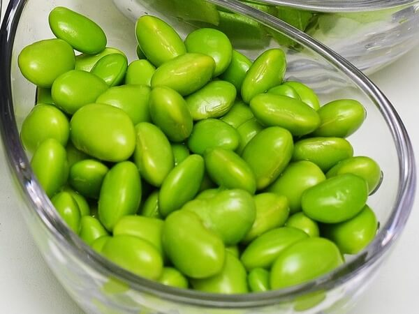 is edamame good for dogs