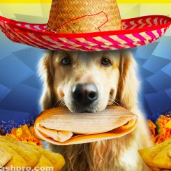 can dogs eat tamales