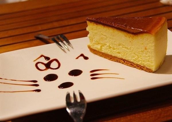 dog cheesecake