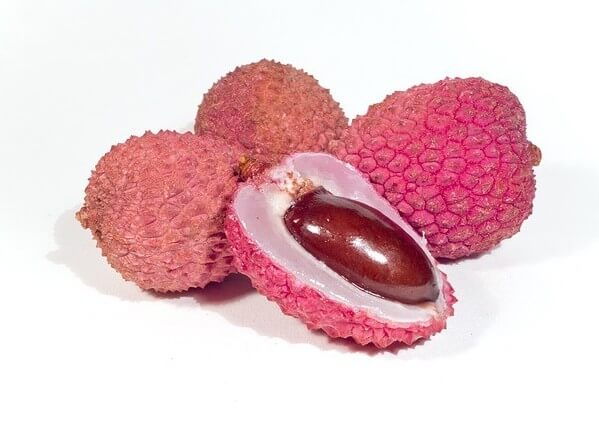 lychee seeds edible for dogs