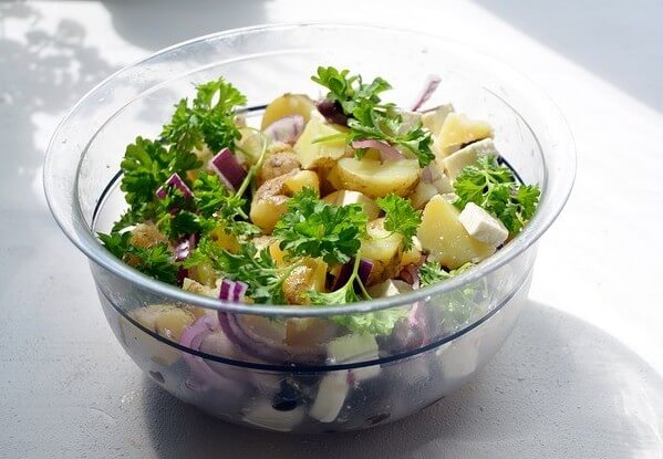 potato salad with onion and cheese is harmful to dogs