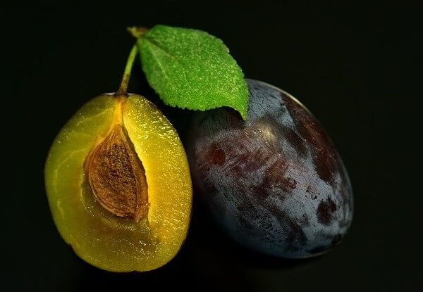 can dogs eat plums without the pit