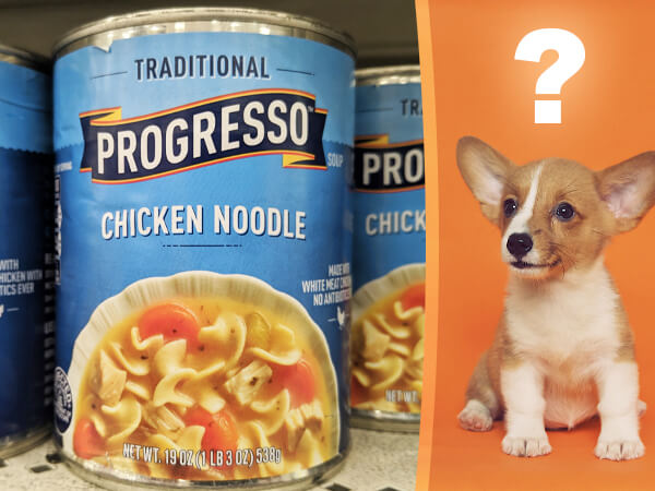 is progresso chicken noodle soup healthy for dogs