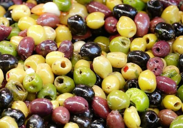 can my dog eat olives