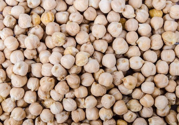 chickpeas for dogs good or bad