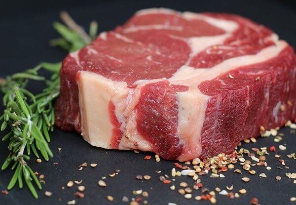 feeding your dog Steak